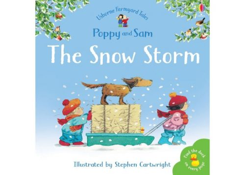 Usborne Poppy and Sam The Snow Storm