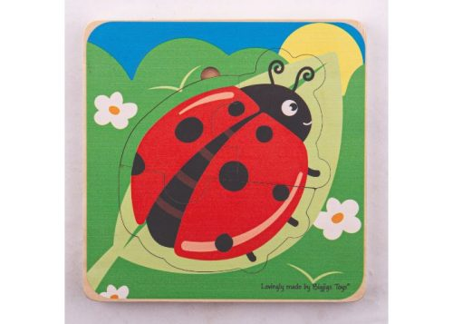 Bigjigs Toys Ladybird Lifecycle Layer Puzzle